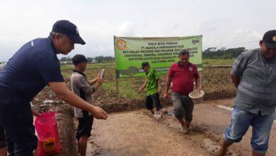 Photo of UNSOED  berkolaborasi dengan PT MHS bantu petani melalui Program Teaching Industry