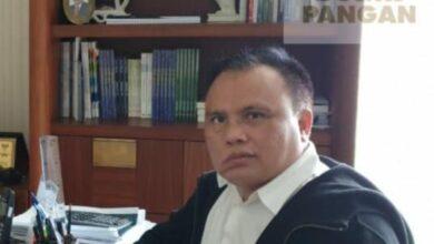 Photo of KORPORASI PETANI Amandemen Swasembada Pangan